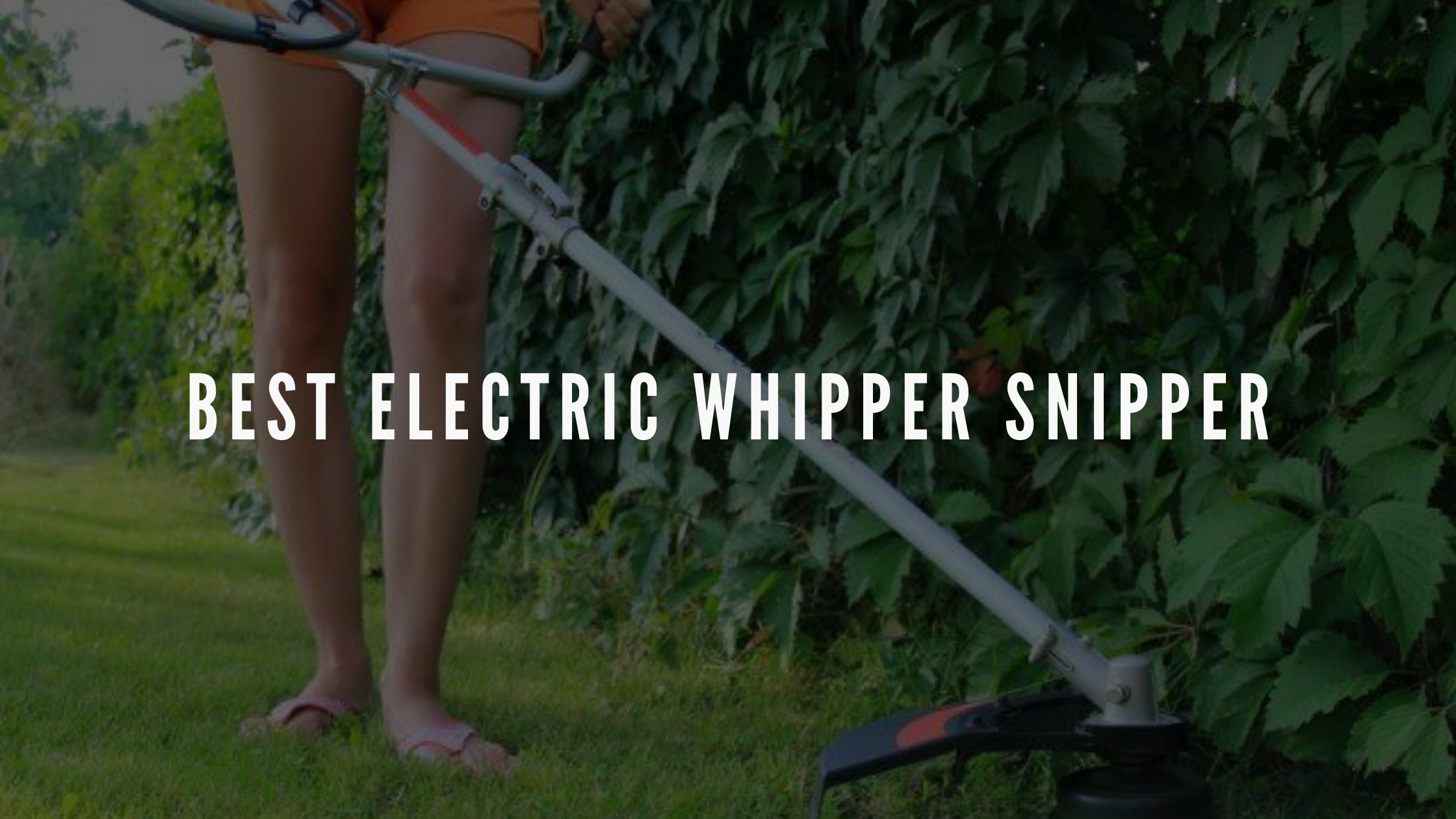 best electric whipper snipper australia