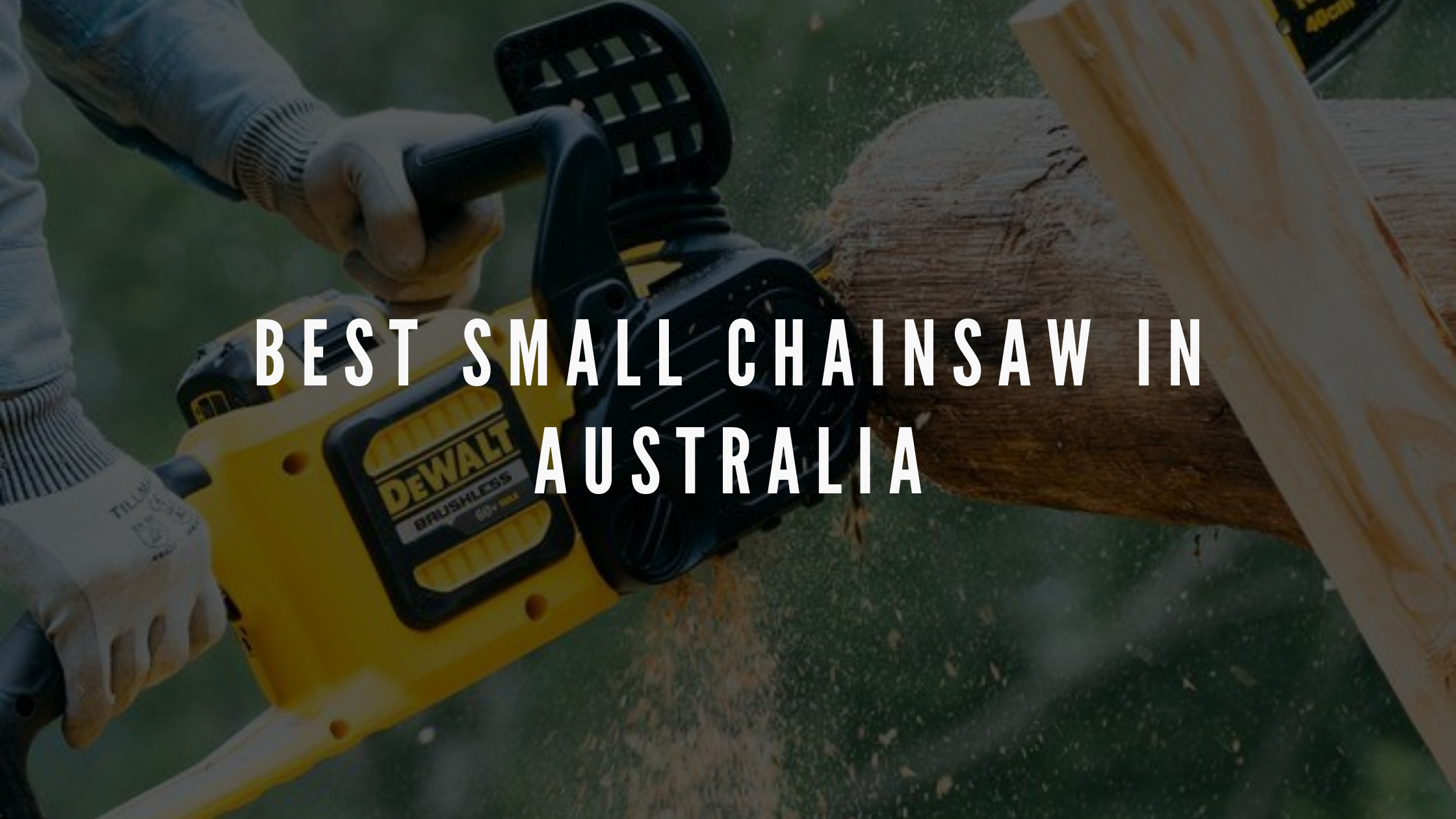 best small chainsaw australia